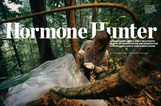 cheryl_knott_hormone-hunter_page_1